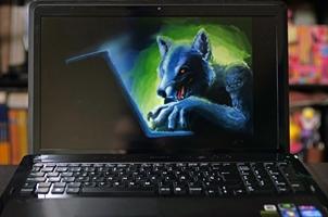 El lobo acechando en Internet